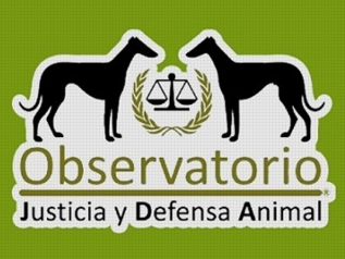 observatorio justicia defensa animal