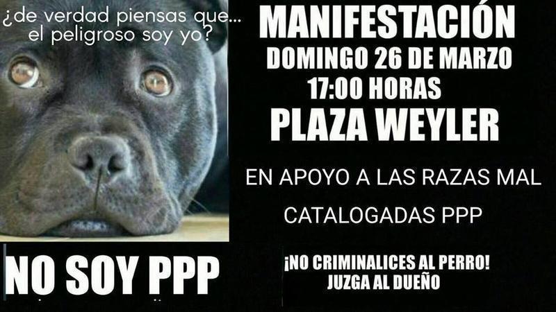 perros ppp 26 m