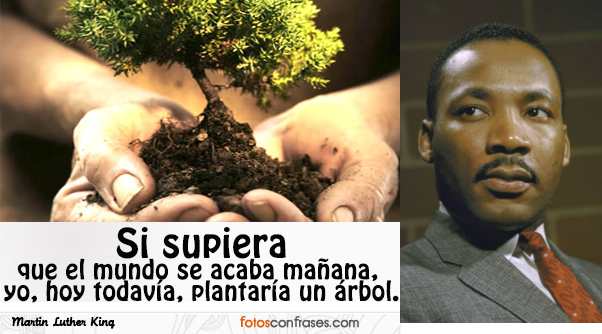LUTHER KING FRASES
